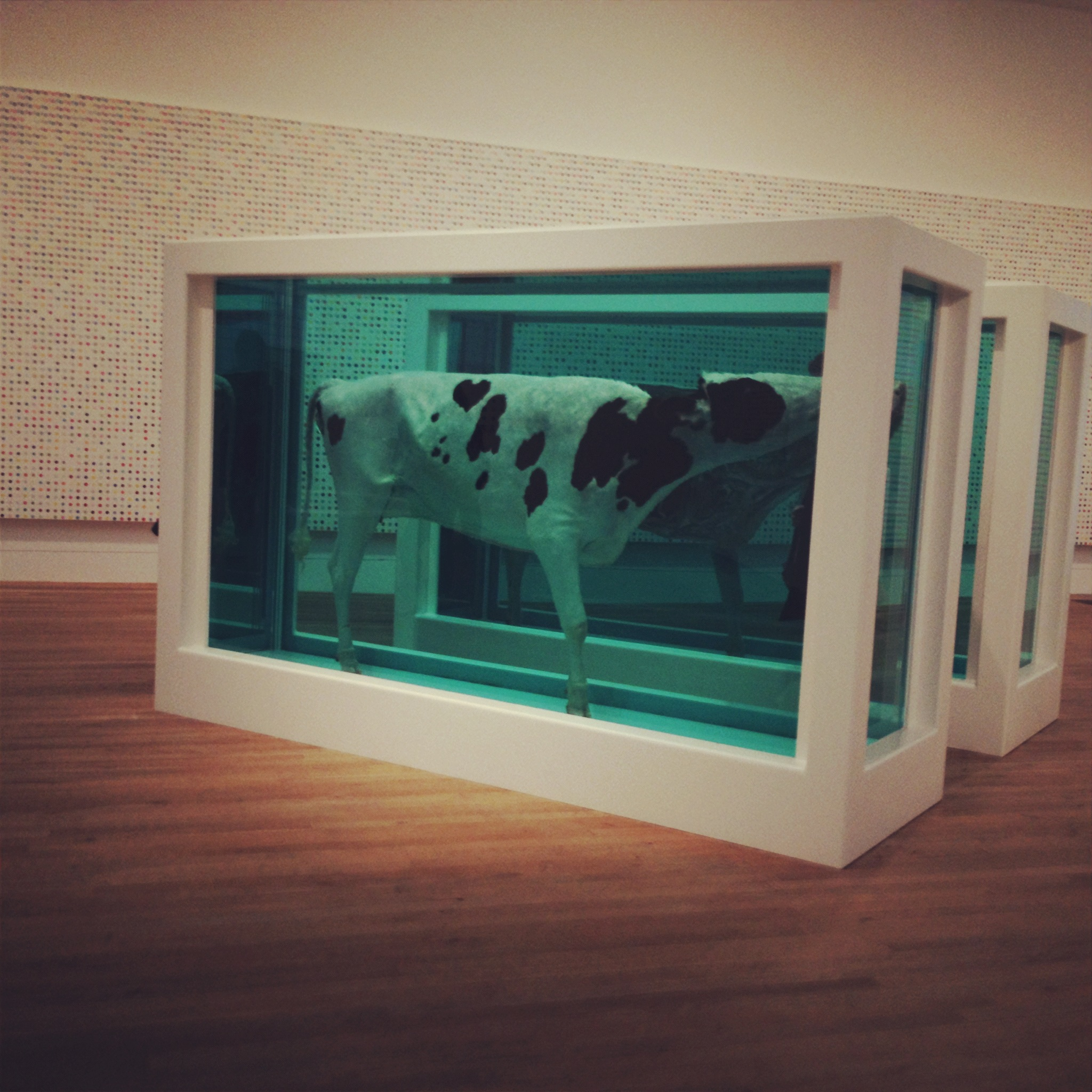 expo damien hirst